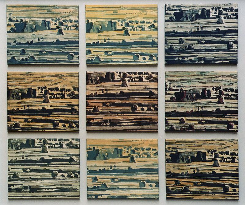 9 Farbvariationen eines Landschaftsausschnittes von oben, montiert auf eienm hellgrauen Holzrahmen.
