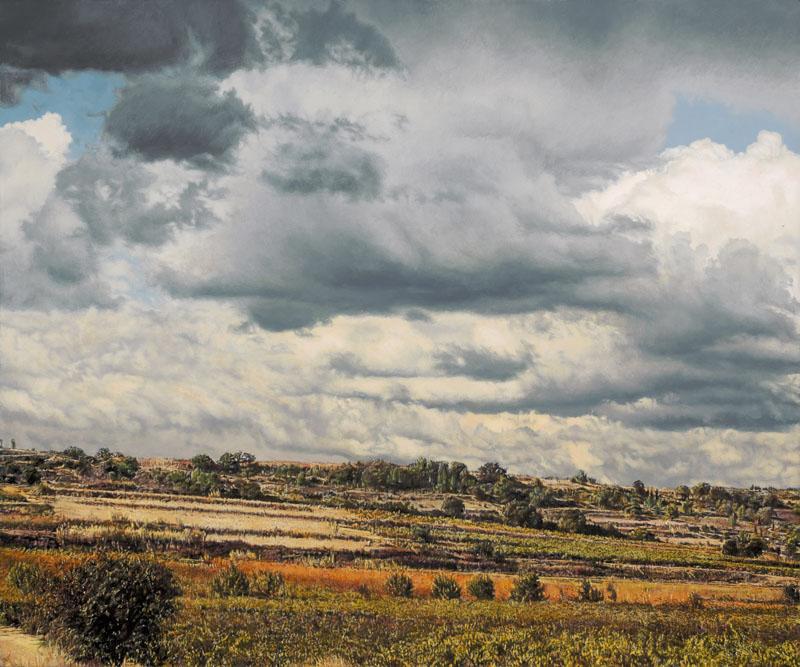 Herbstliche Landschaft mit niedrigem Horizont und dunklen Wolken.