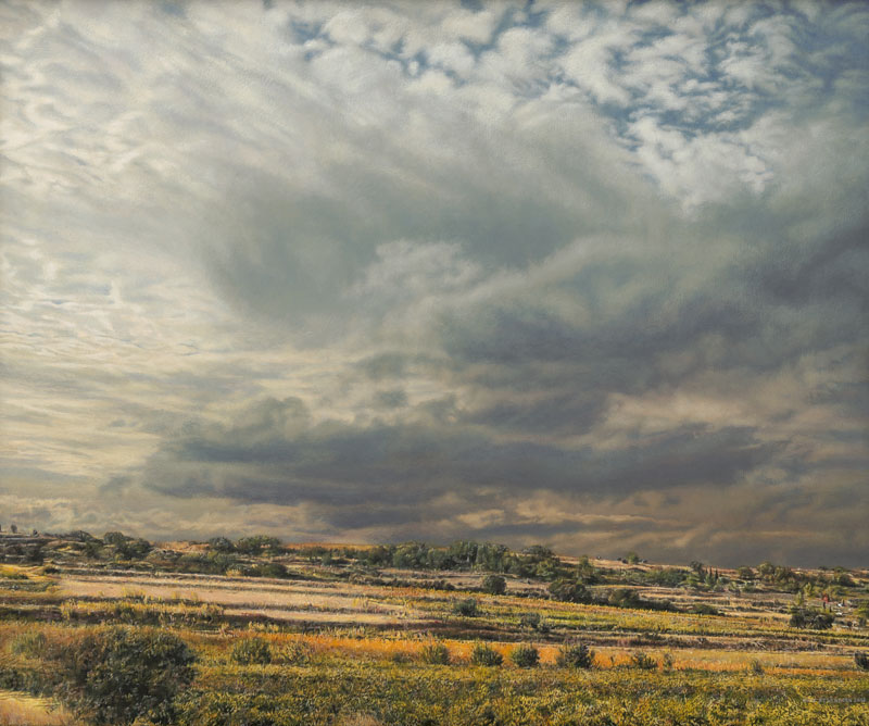 Herbstliche Landschaft mit niedrigem Horizont und dunkler Wolke.